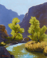 Along the Fremont River Study