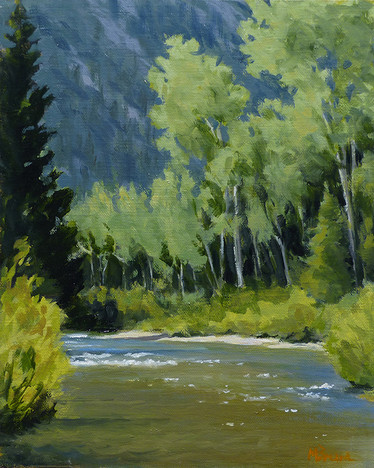 Chalk Creek Study