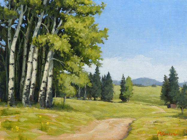 Road to Cheesman Ranch