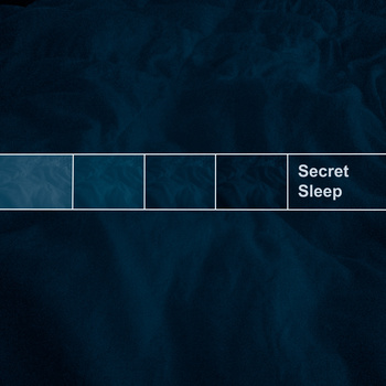 SecretSleep.jpg