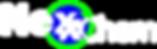 NexxChem Logo_WHITE_wo-tagline.png