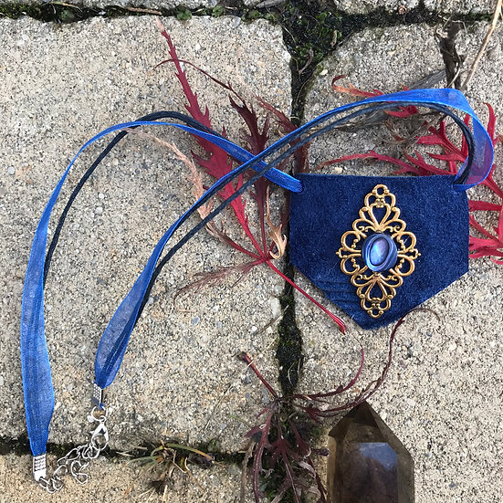 Blue Abalone shell & Leather necklace