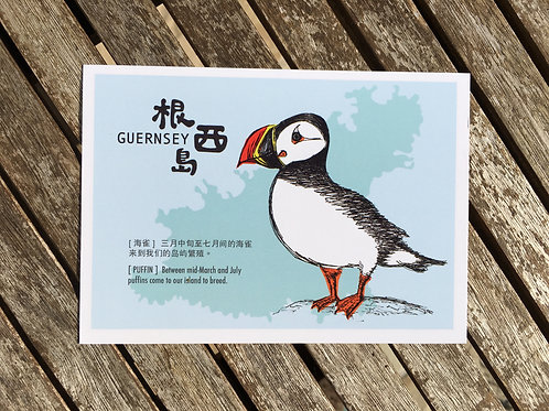 Puffin Postcard (Chinese)