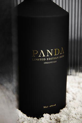 Panda Studio 2020-489b.jpg