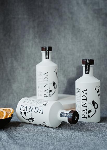 PANDA-projet-4.png