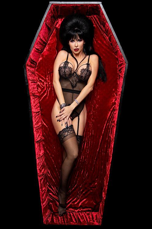 Elvira Lingerie