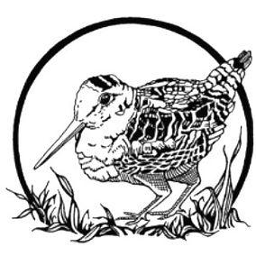 RCC Logo.jpg
