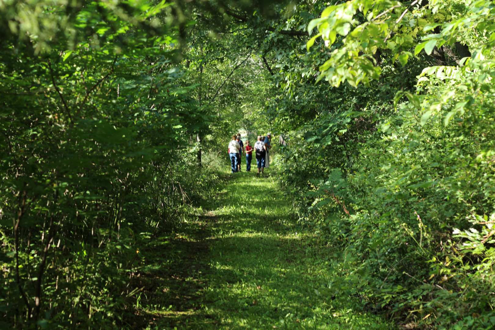 Visitors enjoy a Guided Hike at Androne Woods.
