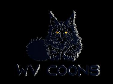 WVCOONS #D.png