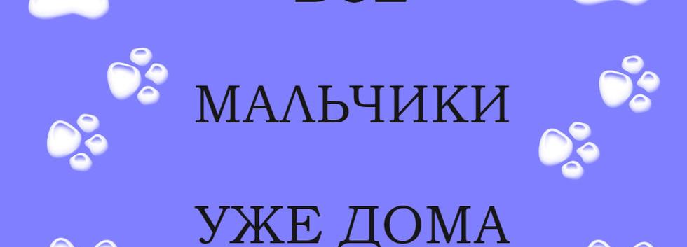 МАЛЬЧИКИ ДОМА.jpg