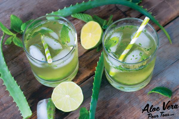 Jus aloe vera | Mojito Aloe Vera, Citron Vert et Menthe