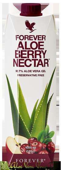 Aloe Berry Nectar Tetrapack