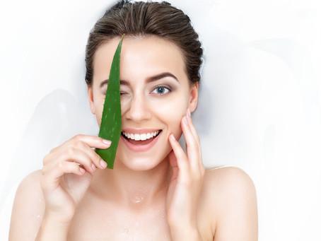 Aloe vera   L'utiliser sur le visage et la peau, bienfaits, beauté, conseils, produits