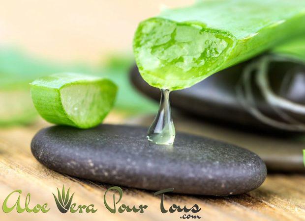 Aloe vera forever toxines