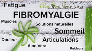 Fibromyalgie et Aloe Vera   Traitement et solutions naturelles
