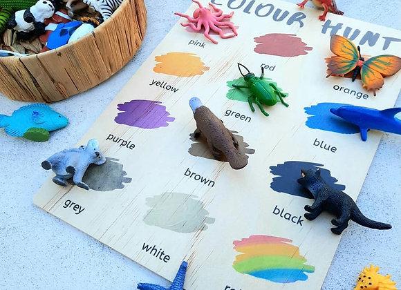 Colour Hunt Board