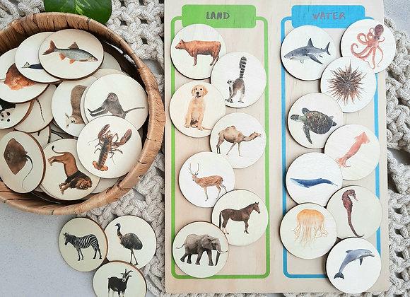 Land & Water Animal Sorting Board