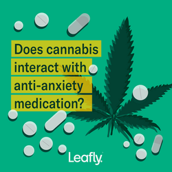 v1_Cannabis interaction - Social Post 1x
