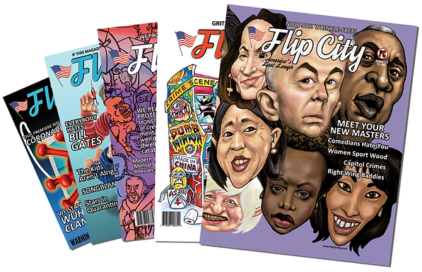 Flip City Bundle: Issues 1-8