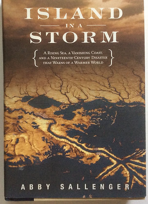 Island in a Storm   by Abby Sallenger