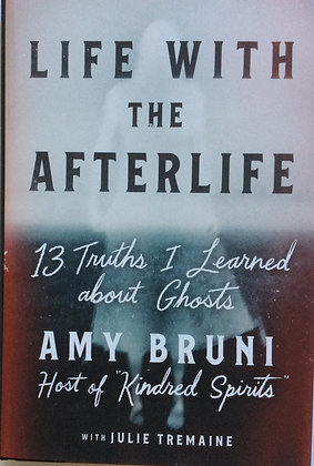 Life With The Afterlife  by Amy Bruni