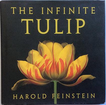 Infinite Tulip   Photographed by Harold Feinstein