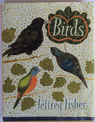 Birds   by Jeffrey Fisher
