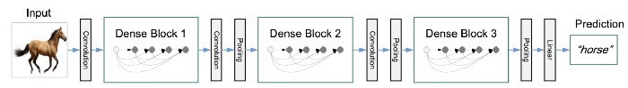A picture from a Medium article showing the overview of DenseNet architecture