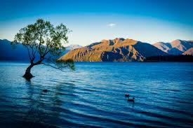 WANAKA: THE SOUTH ISLAND OF NEW ZEALAND