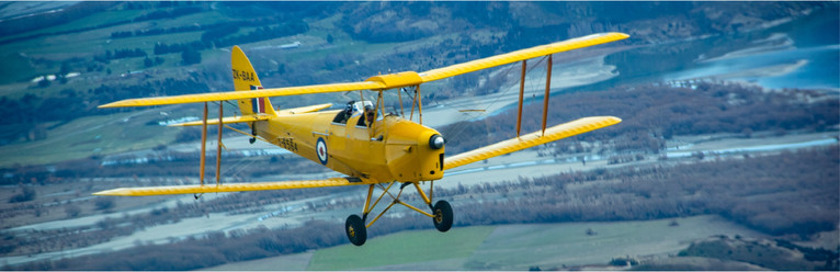 Tigermoth flying.jpg