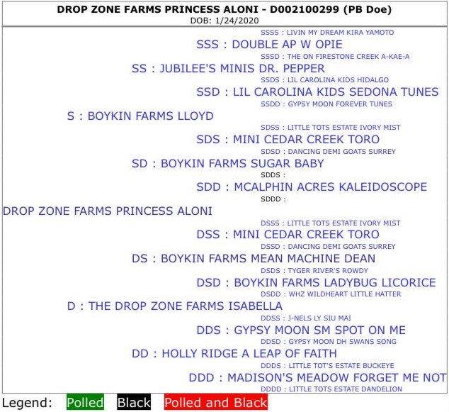 Drop Zone Farms Princess Aloni
