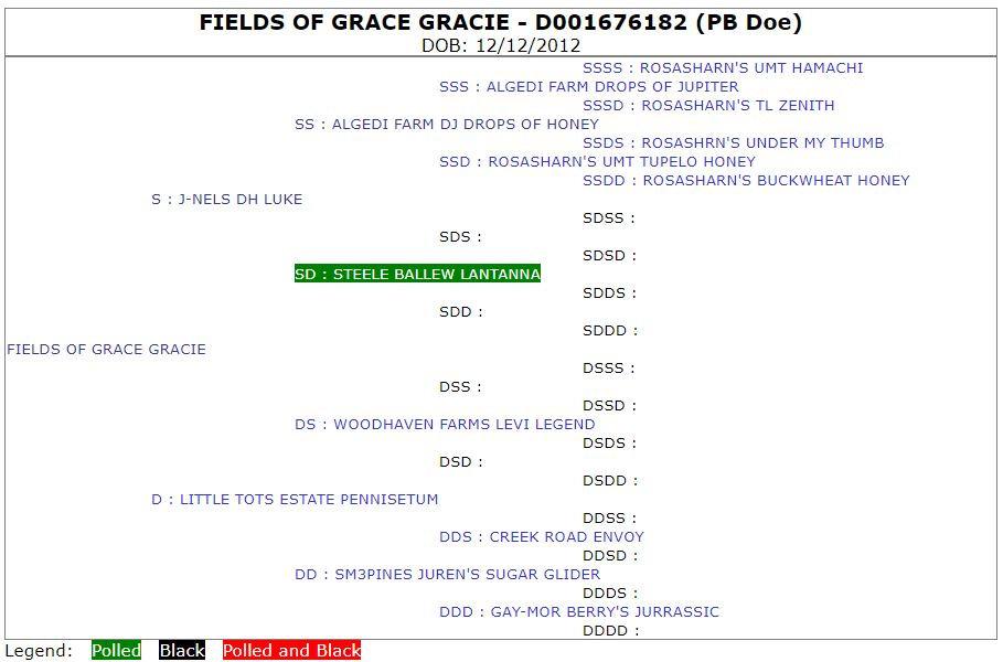 Fields of Grace Gracie