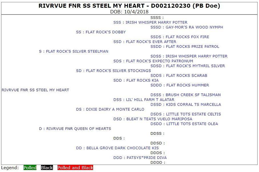 RivrVue FNR SS Steel My Heart