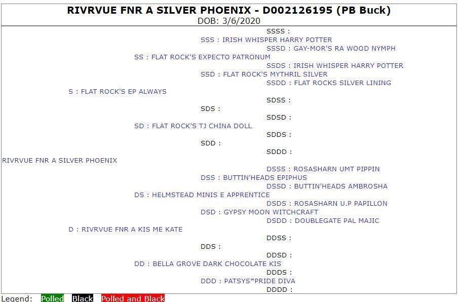 RivrVue FNR A Silver Phoenix