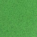 6017 MAY GREEN