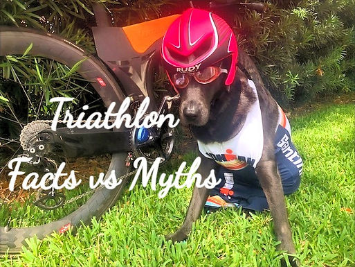 7 False Triathlon & Multisport Myths