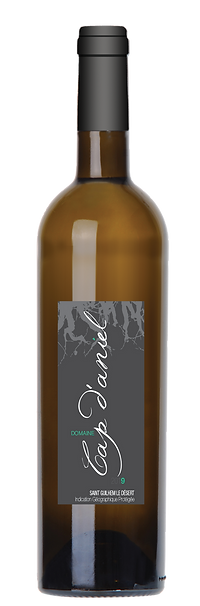 1 bouteille cap-daniel-vin-Blanc-2019.pn