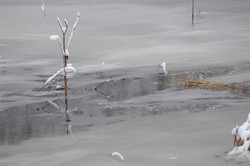 Lac des Mortes gelé