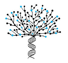 dna-double-helix-drawing-13.jpg