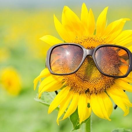 Energía primaveral: marketing estacional