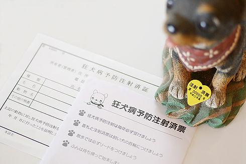 狂犬病の予防接種