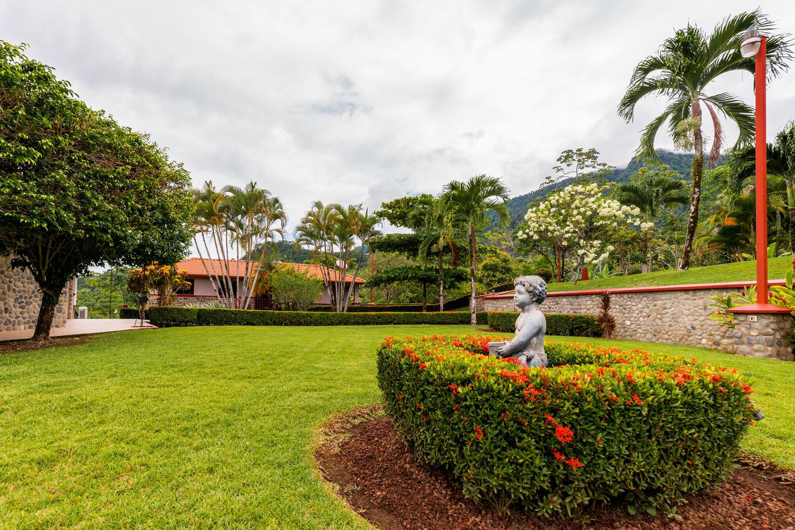 The garden and yoga area