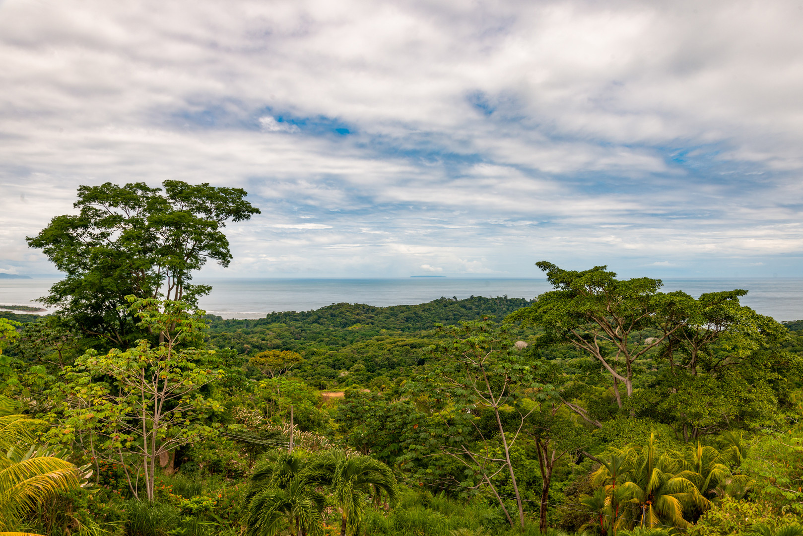 Beautiful views of the oceans and jungle