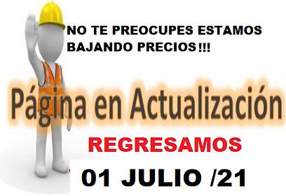 ACTUALIZACION PAG WEB.png