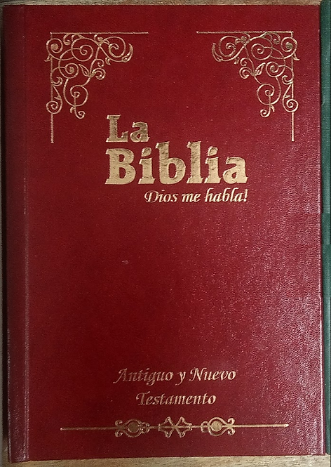 La Biblia Catolica Antoguo y nuevo testamento