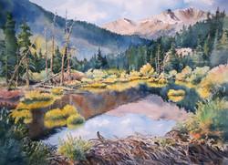 Rocky MT Beaver Pond