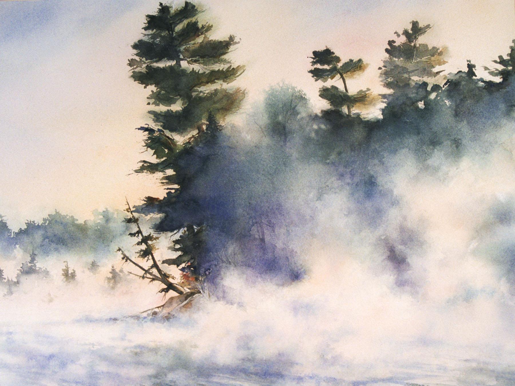 Morning Fog in Wisconsin