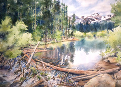 Beaver Dam: Rocky MT