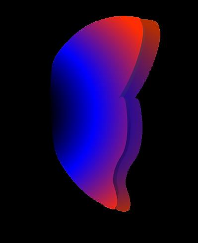 Logo (couleur).png