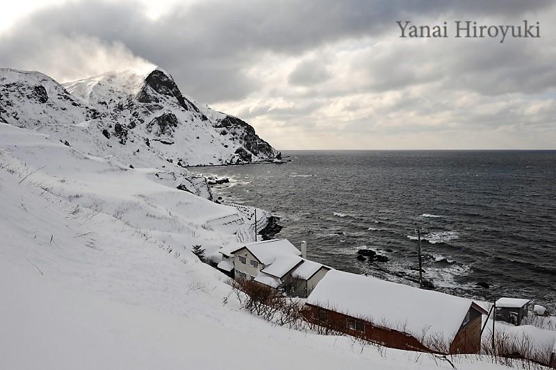 真冬の礼文島 (北海道)